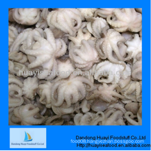 cleaned frozen whole baby octopus superior supplier and first rate service