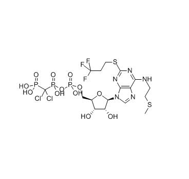 White Power P2Y12 Inhibitors Cangrelor 163706-06-7