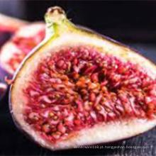Pó de suco de figo puro de frutas recém-colhidas