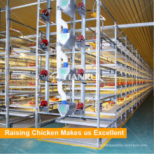 China manufacturer H Type Automatic Broiler Poultry Farm Cage Design