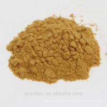 Hochwertiges 100% natürliches organisches Coprinus Pilz-Auszug-Pulver