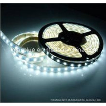 DC12V / 24V 60LEDs / M 5630 SMD Iluminação de Faixa de LED