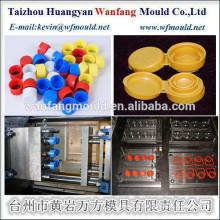 China Taizhou plastic flip top cap mould 28mm