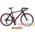 Alloy Drop Bar Road Bicycle (ANB11PR-2680)