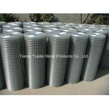 Maille métallique soudée revêtue de PVC pour construction, maillage galvanisé à faible prix, galvanisé (après soudage) Mesh soudé