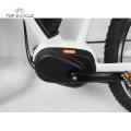 26inch Umwelt Bafang MAX Mitte Antriebsmaschine Elektro Fahrrad Großhandel