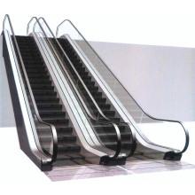 Escalier Escalier XIWEI VVVF À L'Étape En Inox