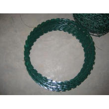 PVC Coated Razor Barbed Wire in Best Price