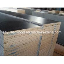 Waterproof Shutting Plywood/Black Brown Film Faced Plywood for Construction