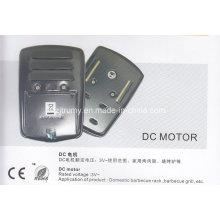 BBQ Spit Rotisserie DC Motor (TM-DJ10)