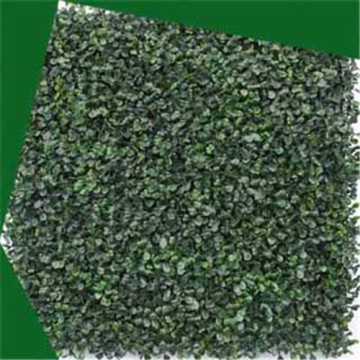 Buxo artificial deixa hedge