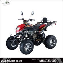 Construisez vos propres kits VTT 250cc EEC sur Road Quad