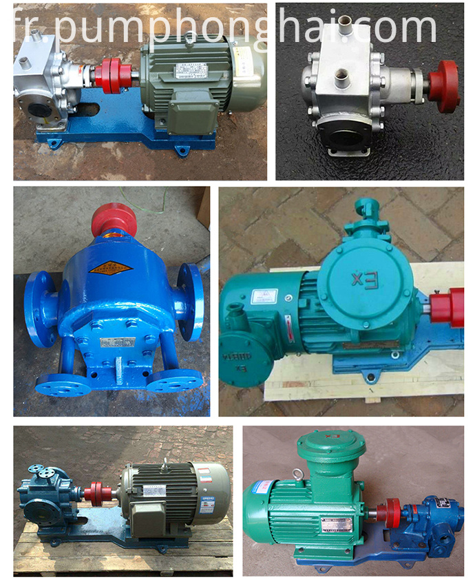 Truck Petroleum Engine Oil Gear Pump