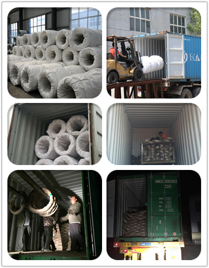 electro galvanized iron wire loading photo