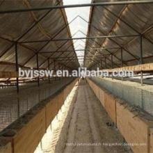 Cage de trappe de vison, cage de vison de grillage d'acier inoxydable, cage de fil d'acier pour le vison