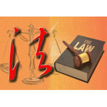 What is The Foreign Investment Law