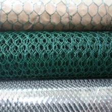 PVC revestido / galvanizado Hexagonal fio Mesh