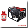 BISON (CHINA) Generator Fornecedor Todos os tipos do gerador do gás, gerador do LPG, gerador do biogás