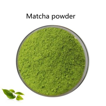 Compre pó Matcha orgânico natural online para venda