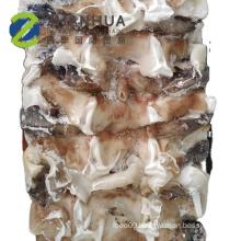 Frozen Chinese Neck Good Price  Peru Giant Squid Neck 500g