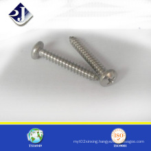 Supply Made in China Self Tapping Screw (DIN7981)