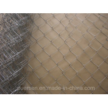 High Quality Chain Link Fence (PVC coated and galvanized)
