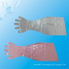 Wegwerflange Handschuhe für Schwein