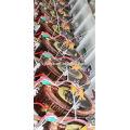 Novo design secundário 8kw bobina de enrolamento bobina refrigerador regulador de tensão na Rússia
