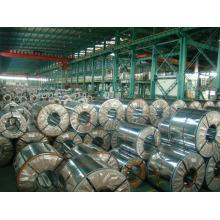 Hot DIP Galvanized Steel Coil (G30, G40, G60, G90 GI Coil)