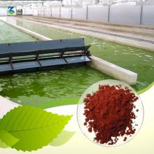 Fabrik-Versorgungsmaterial Astaxanthin-Puder