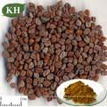 Extrato natural da semente de feno-grego da matéria prima 4-Hydroxyisoleucine 20% farmacêutica