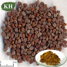 Extrait naturel de saponines de fenugrec 50% de graines de fenugrec
