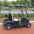 2 seats electric golf carts for sale