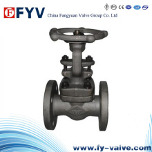 API Forged Steel Gate Valve with Manual