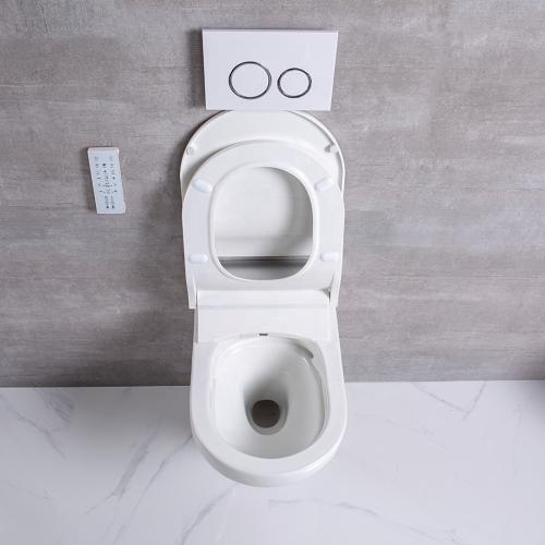 wall amount toilet