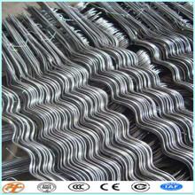 factory supply galvanized plant support tomato spiral stakes