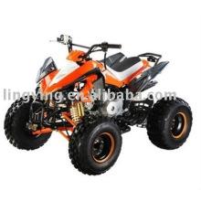 Кавасаки ATV 110cc сертификат CE