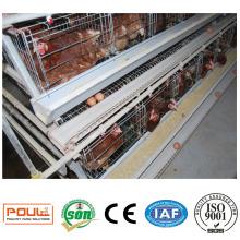 Couche d'oeuf de volaille commerciale Cage Batterie de poulet Coop