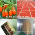 Nueva cosecha de Bayas Orgánicas Naturales de Goji