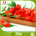 Dulce de goji / mermelada de wolfberry de China / mermelada de fruta / productos nativos