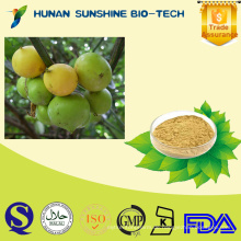 China Lieferanten Garcinia Cambogia Extrakt / Brindleberry / Malabar / Kudam Puli (Topf Tamarinde) in Bulk