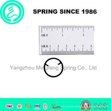 Custom Small Spiral Torsion Spring