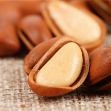 Natural Cheap Raw Chinese Pine Nuts / Chinese Pine Nuts / Organic Chinese Pine Kernel