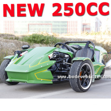 2015 NUEVA motocicleta del trike de la rueda del interruptor de China 250cc (MC-369)