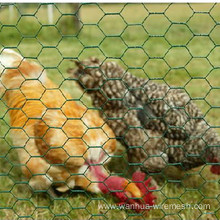 Plastic Chicken Wire Mesh