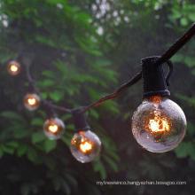 Clear G40 Globe Bulb Edison Festoon Lights