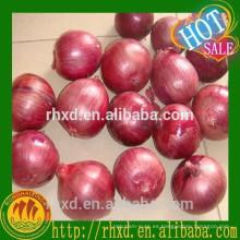El mejor precio de cebolla para el mercado de malasia