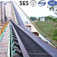 China Bucket Elevator Conveyor Belts