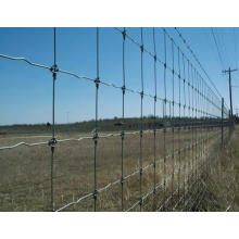 Hot Sale Fixed Knot Woven Wire Fence