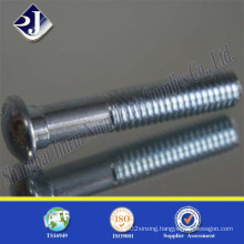 Zinc Blue Plated Track Bolt